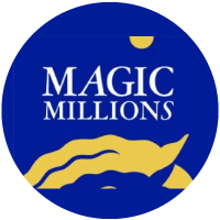 MAGIC MILLIONS SALES